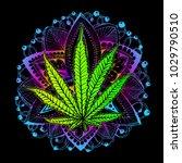 cannabis leaf  marijuana  herb  ...   Shutterstock .eps vector #1029790510