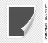 photo frame. white plastic... | Shutterstock .eps vector #1029791194