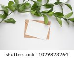 mockup card with plants.... | Shutterstock . vector #1029823264