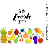 vector illustration of fruits... | Shutterstock .eps vector #1029843376