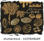 cocoa set on a black background.... | Shutterstock .eps vector #1029848689