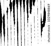black and white grunge stripe... | Shutterstock .eps vector #1029848869