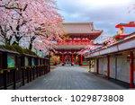 sensoji ji temple in asakusa is ...   Shutterstock . vector #1029873808