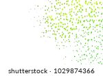 light green vector low poly... | Shutterstock .eps vector #1029874366