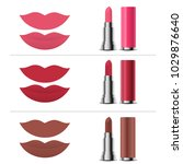 mouth and shades of lipstick... | Shutterstock .eps vector #1029876640