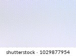 light pink  blue vector...   Shutterstock .eps vector #1029877954