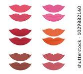 shades of lipstick on white...   Shutterstock .eps vector #1029882160