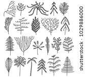 set of tree doodles vector | Shutterstock .eps vector #1029886000