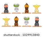 scottish terrier dogs doing...   Shutterstock .eps vector #1029913840