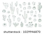 set of hand drawn different... | Shutterstock . vector #1029946870