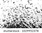 abstract background. monochrome ... | Shutterstock . vector #1029952378