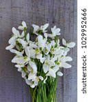 snowdrop flowers on wooden... | Shutterstock . vector #1029952666