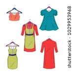 clothes on hangers. women... | Shutterstock .eps vector #1029953968