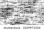 black and white halftone dots...   Shutterstock .eps vector #1029971524