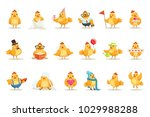 little yellow chicken chick... | Shutterstock .eps vector #1029988288