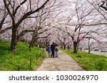 family walking on the oathway... | Shutterstock . vector #1030026970
