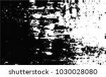 black and white halftone....   Shutterstock .eps vector #1030028080
