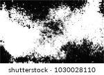 black and white halftone....   Shutterstock .eps vector #1030028110