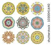 flower raster mandalas set.... | Shutterstock . vector #1030041640