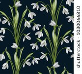 seamless pattern of snowdrops... | Shutterstock .eps vector #1030066810