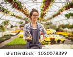 smiling successful florist... | Shutterstock . vector #1030078399