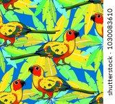 seamless pattern  sun parakeet... | Shutterstock .eps vector #1030083610