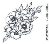 vector black and white floral... | Shutterstock .eps vector #1030103863