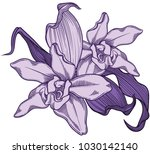 accurate and detailed hand... | Shutterstock .eps vector #1030142140