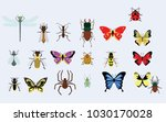 small animals vector images | Shutterstock .eps vector #1030170028