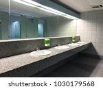 row of wash sink and mirror in... | Shutterstock . vector #1030179568