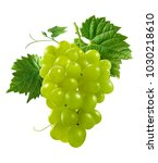bunch of green grapes isolated... | Shutterstock . vector #1030218610