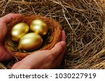 Shiny Golden Eggs And Golden...