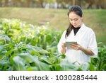 biotechnology woman engineer... | Shutterstock . vector #1030285444