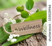 label  wellness | Shutterstock . vector #103028966