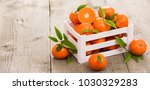 fresh tangerine in the crate | Shutterstock . vector #1030329283