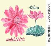 lotus flower watercolor vector... | Shutterstock .eps vector #1030348009
