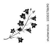 silhouette campanula . black... | Shutterstock .eps vector #1030378690
