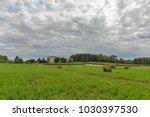 rainy summer landscape close to ... | Shutterstock . vector #1030397530