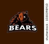 vector of bears sport logo | Shutterstock .eps vector #1030398910