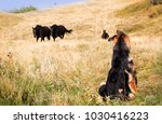 German Shepherd Puppy Watching...