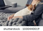 Stock photo cozy home woman covered with warm blanket watching movie hugging sleeping dog relax carefree 1030440019