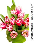 a bouquet of blooming tulips. | Shutterstock . vector #1030456474