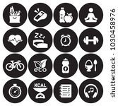 health and fitness icons | Shutterstock .eps vector #1030458976