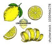 lemon sketches. hand drawn... | Shutterstock .eps vector #1030466278