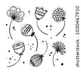 wildflowers. vector floral set. ... | Shutterstock .eps vector #1030467910