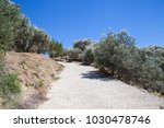 rouvos gorge on crete  greece.... | Shutterstock . vector #1030478746