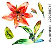 watercolor exotic tropical wild ... | Shutterstock . vector #1030508764