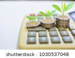 plant tree on coins saving...   Shutterstock . vector #1030537048