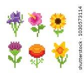 flowers icon set. pixel art.... | Shutterstock .eps vector #1030573114