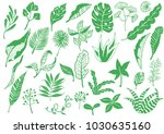 every kind of green leaves icons | Shutterstock .eps vector #1030635160